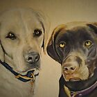 Two Lovely Labs by Pam Humbargar