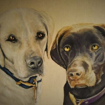 Two Lovely Labs by phumbargar