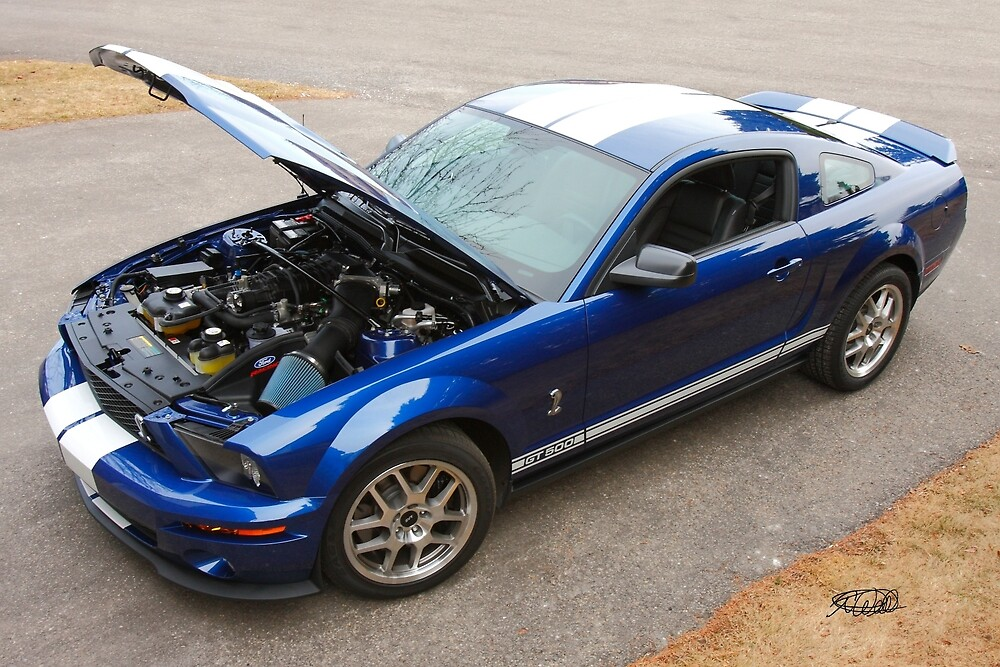 """2009 Mustang GT500 """"SHELBY"""" by Todd Weeks"""