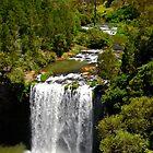 Dangar Falls by Penny Smith