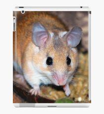 Curious Hamster iPad Case/Skin