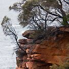 Coastal Cliff by Werner Padarin