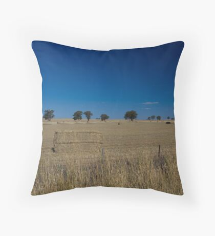 Make hay while the sun shines part 1 Throw Pillow