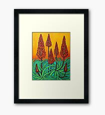 South African Fireball Framed Print