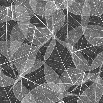 Beautiful nature botanical leaf skeleton pattern by UDDesign