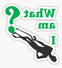 THE RIDDLER - WHAT AM I? Sticker