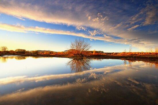 Split The Cloud by Bob Larson