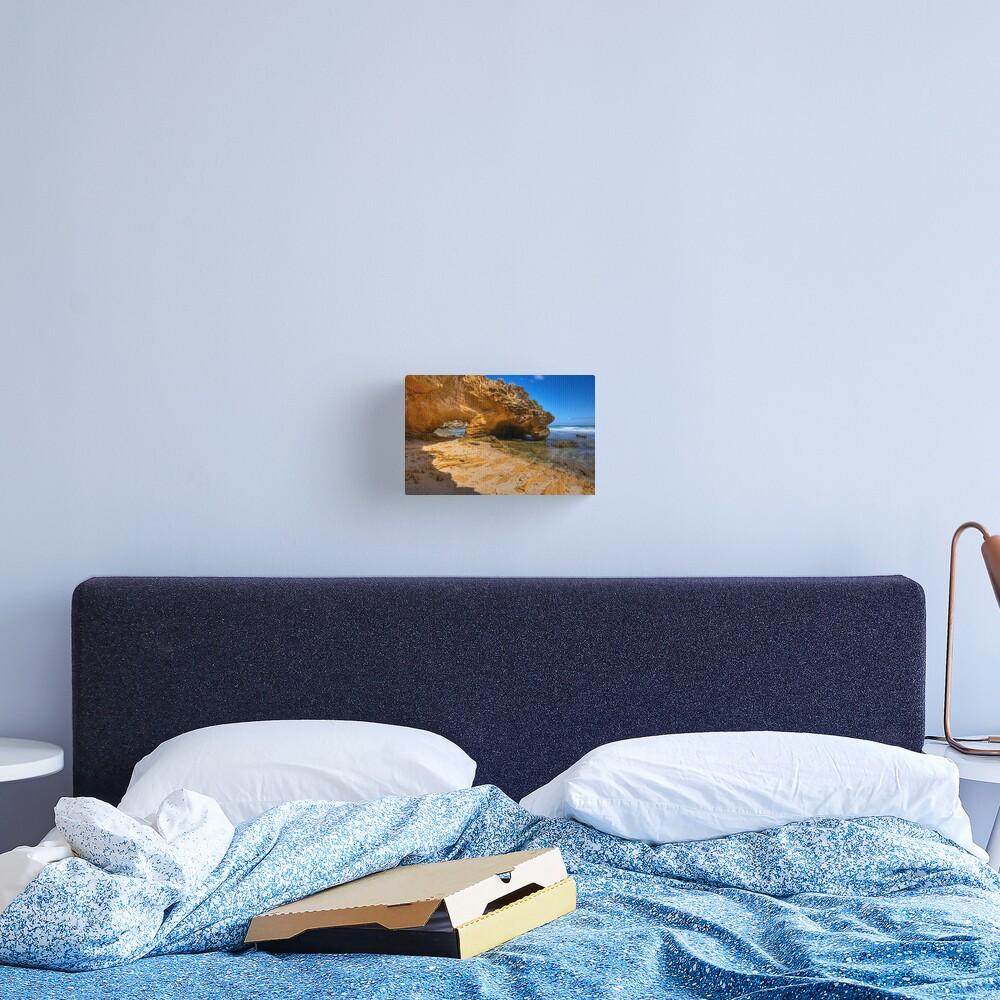 Dinosaur Claws Canvas Print