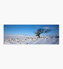 A Yorkshire Winter Wilderness Photographic Print