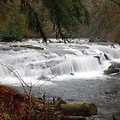 Sweet Creek Rapids #3 by Chappy