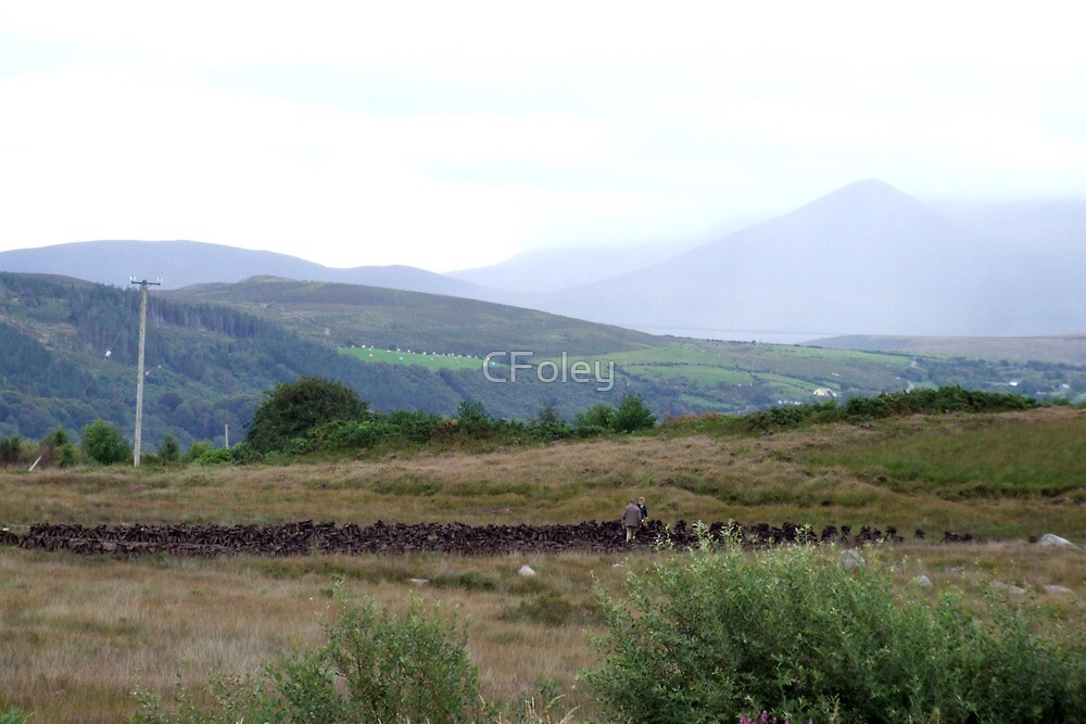 Cutting & Drying Turf in Kerry by CFoley