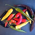 Bunter Chili von Gourmetkater