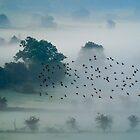 Dawn over Cumbria  by Gary Power