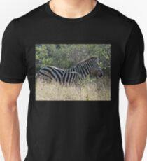 Zebra in Africa Unisex T-Shirt