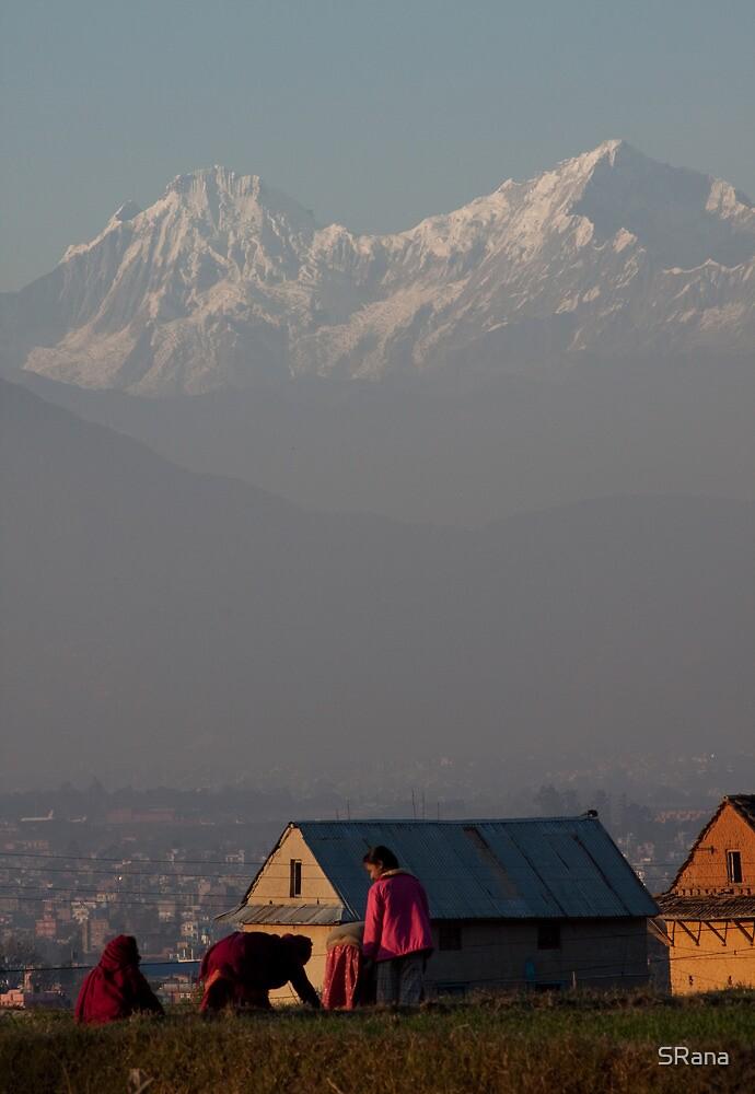 Nepalese landscape by SRana