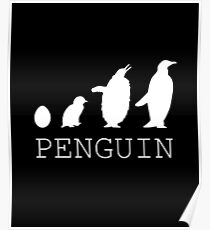 Penguin evolution Poster