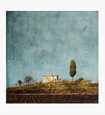 Cyprus hill Photographic Print