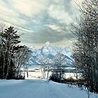 Snow In the Tetons by Nancy Richard