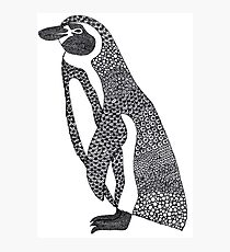 Patterned Humboldt Penguin Photographic Print