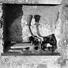 A Yoke In A Wall by rorycobbe