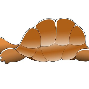 Sleeping tortoise by Royisaacs