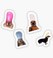 dogs with crocs Sticker