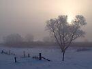 Winter's Pleasures by Dawne Olson