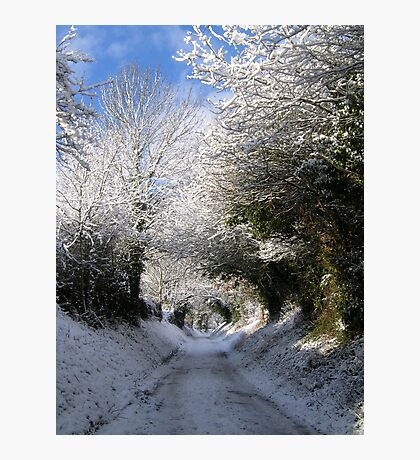 Winter Lane Photographic Print