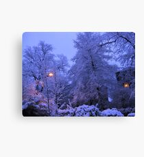 NARNIA WINTER Canvas Print
