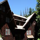 Oregon Caves Lodge - Cave Junction, OR by searchlight