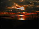 Lake Michigan Sunset Silhouette by Shelly Harris
