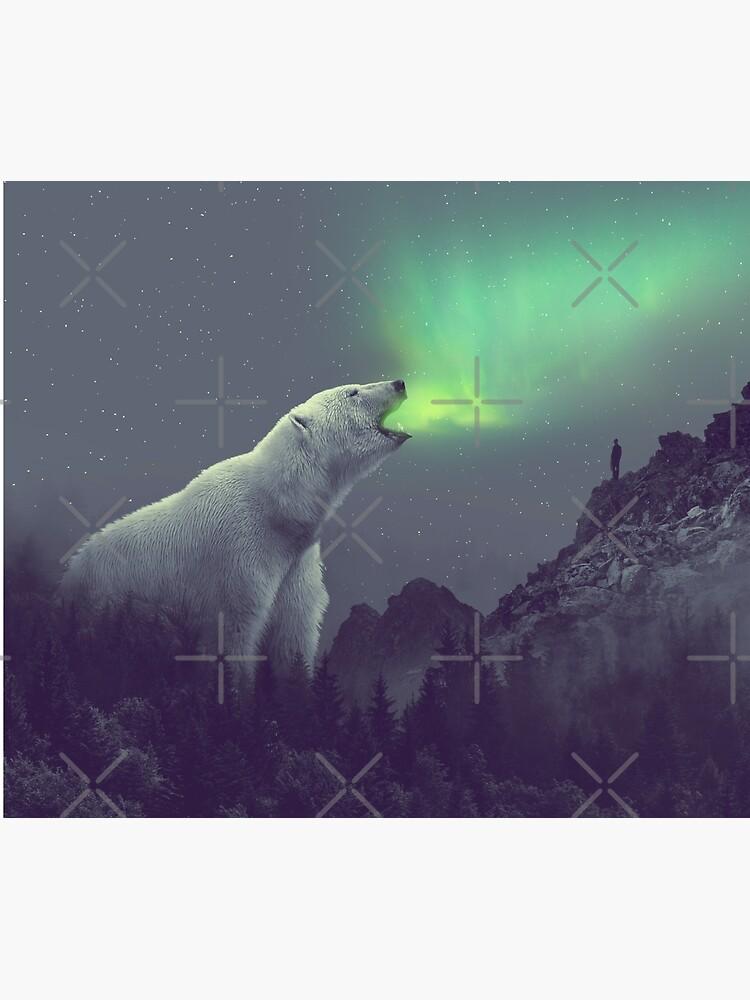 aurora by soaringanchor