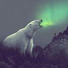 Aurora von soaringanchor