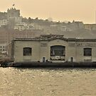 Ghost Signs in the Bay by Martha Sherman