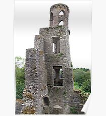 Blarney Castle Tower Poster