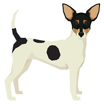 Toy Fox Terrier by tcarey