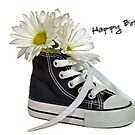 Birthday Sneaker by Maria Dryfhout