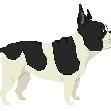 French Bulldog by tcarey
