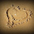 Heart by Katherine Williams