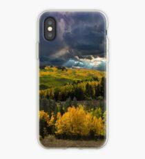 4807 iPhone Case