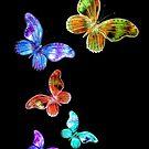 Rainbow Butterflies by Linda Callaghan