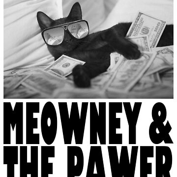 Meowney and The Pawer by Vdubs59