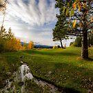Seasonal Change by Barry Buchholtz