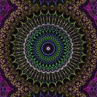 Peacock Mandala by Christopher Ray Peters
