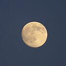 A Golden Moon by Larry Llewellyn