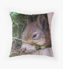 How About Taking A Nap Throw Pillow
