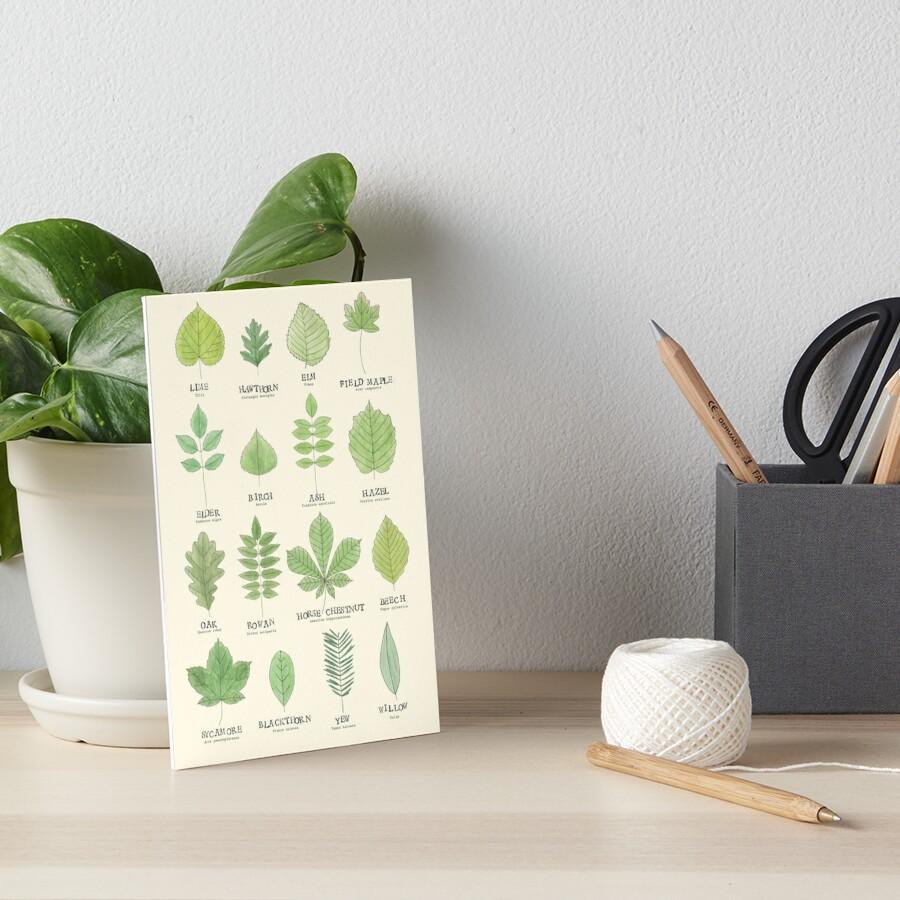 Leaf ID Chart Art Board Print