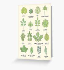 Tarjeta de felicitación Gráfico de ID de hojas