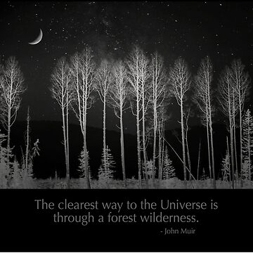 The clearest way to the Universe is through a forest wilderness. by alex4444