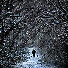 Winter walk by FraserJ